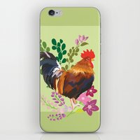 rooster iPhone & iPod Skins featuring rooster by Caracheng