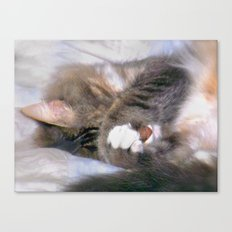 My Cat Actually Sleeps This Way Canvas Print