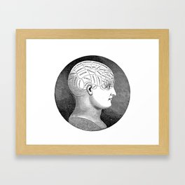 Vintage Phrenology Head Framed Art Print