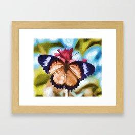 Beautiful Monarch Butterfly Framed Art Print