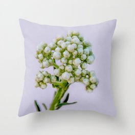 little white flowers Throw Pillow