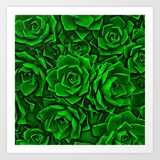 Succulent Green Art Print