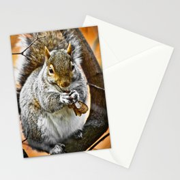 Lunchtime for a Squirrel Stationery Cards