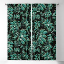Coffee Bean Plant Turquoise Blackout Curtain