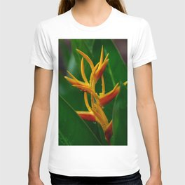 Vivid flower of Bird of paradise T-shirt