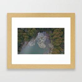 Lakeside trees Framed Art Print