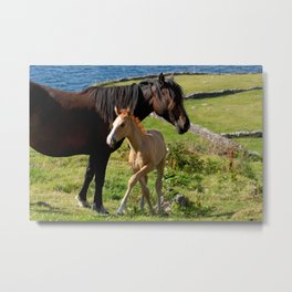 Horses In Landscape Metal Print