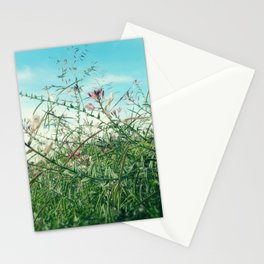 Field Wild Flowers Stationery Cards
