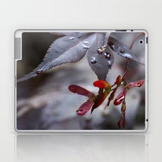 Japanese Maple Seeds II Laptop & iPad Skin