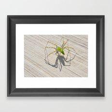 creepy spider Framed Art Print