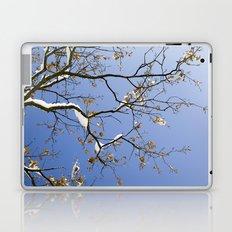 Snowy Branch Laptop & iPad Skin