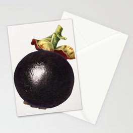 Vintage mangosteen Stationery Cards