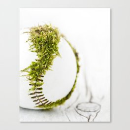 Dragon Moss ball baseball Canvas Print