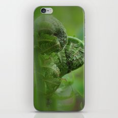 Spring Unfolding II iPhone & iPod Skin