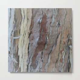TEXTURES -- Fern-Leaved Ironwood Bark Metal Print