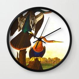 Black Bellied Darter Bird Wall Clock