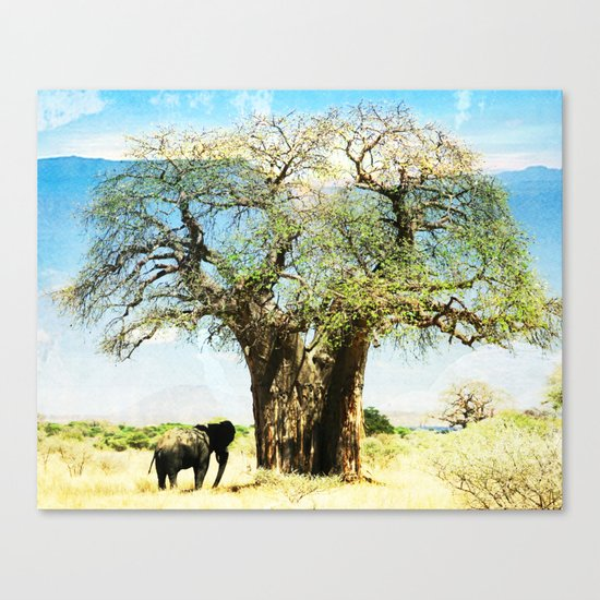 Finding an old friend - elephant in the wild Canvas Print