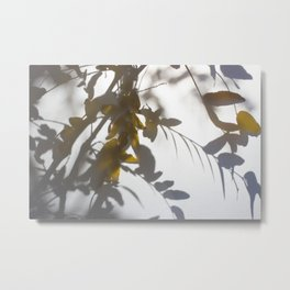 Veiled Nature 5 Metal Print