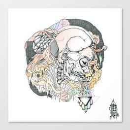 S ( he). Canvas Print