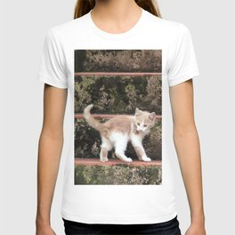 Cute Kitten Playing on the Stairs T-shirt