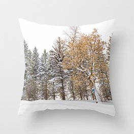 Open Bluebird Birdhouse in Winter Woodland Throw Pillow