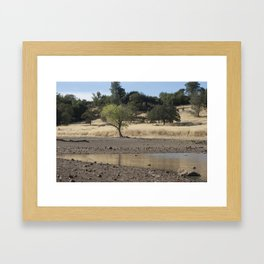 Horseshoe Lake, Chico California Framed Art Print