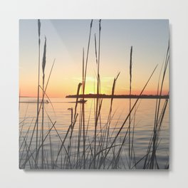 Filtered Sunset Metal Print