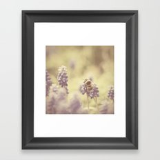 busy buzzy bumble bee ... Framed Art Print