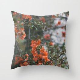 Orange Sorbet, I Throw Pillow