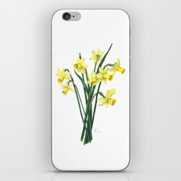 Little Daffodils Botanical Illustration iPhone Skin