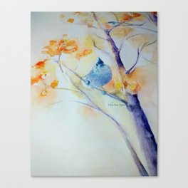 Nuthatch Aspen Morning Looking Up watercolour by CheyAnne Sexton Canvas Print