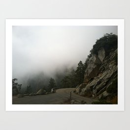Sequoia's Scenic Route Art Print