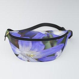 Early Spring Blue - Chionodoxa Fanny Pack