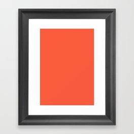 Orange Soda Framed Art Print
