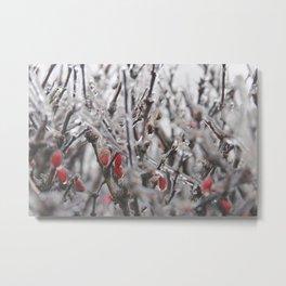 Ice Berries Metal Print