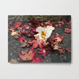 Beautiful Falls Leaves In Japan Metal Print
