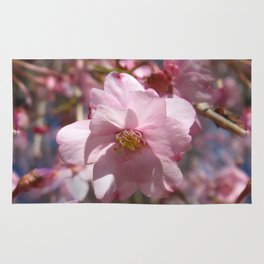 Perfect - Pink Cherry Blossom Rug