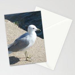 Seagull, Lake Michigan, Shoreline Stationery Cards