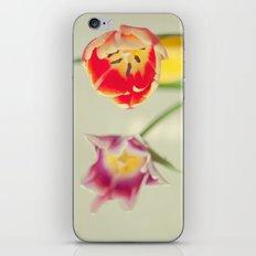 Purple and Orange iPhone & iPod Skin
