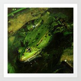 kiss the frog Art Print