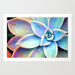 Bright Succulent Art Print