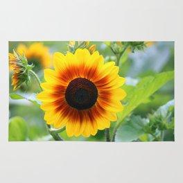 Red Yellow Sunflower Rug