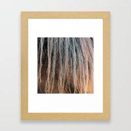 Horse's mane close-up Framed Art Print