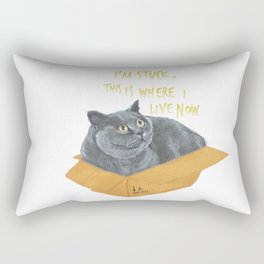 Boxcat Rectangular Pillow