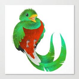 Resplendent Quetzal Canvas Print