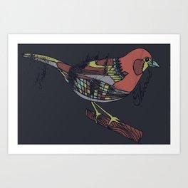 Ruby Throated Art Print