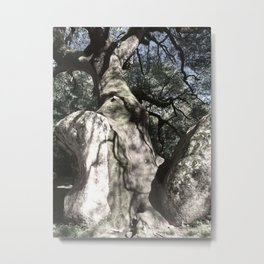 Tree on the rock Metal Print