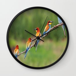 cute bee eaters Wall Clock