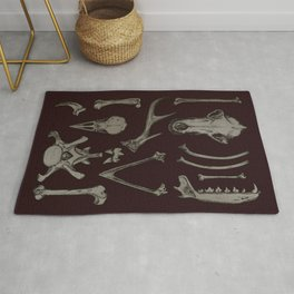 Animal Bones Anatomical Illustration on Dark Red Rug