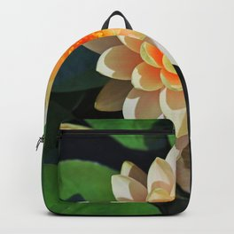 A Wayward Risk Backpack